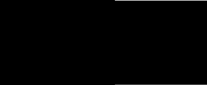 pro flight simulator logo